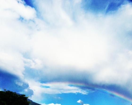 rainbowshare